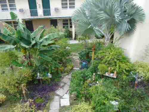 bills-garden-1-july-15-2015.jpg
