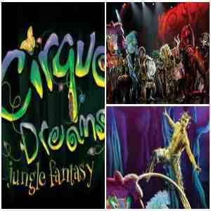 cirque-dreamscollage.jpg